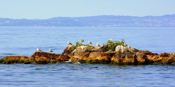 Die Inseln des Gardasees